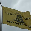 February 3, 1913 - Gadsden Flag