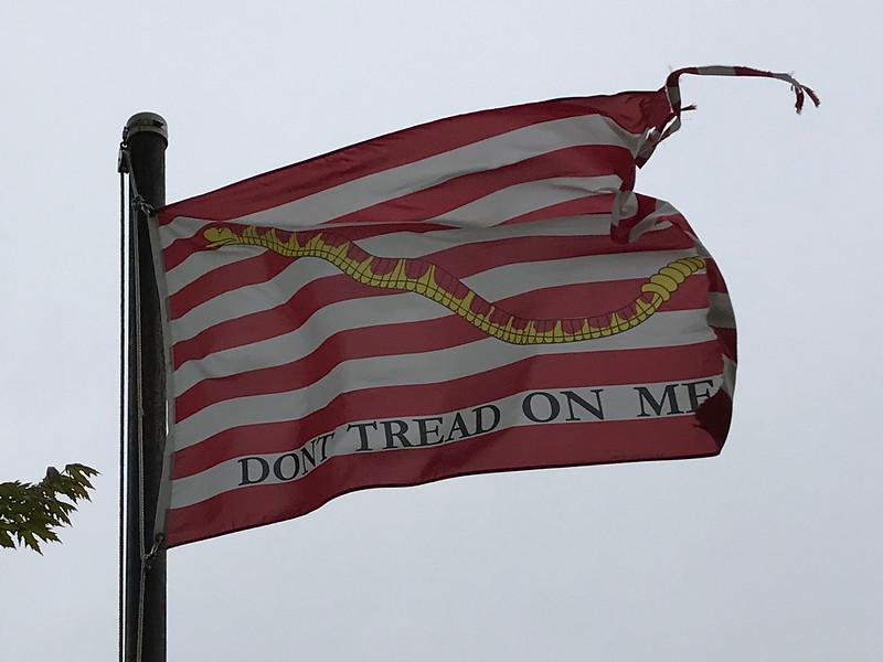 May 7, 1942 - U.S. Navy Jack Flag