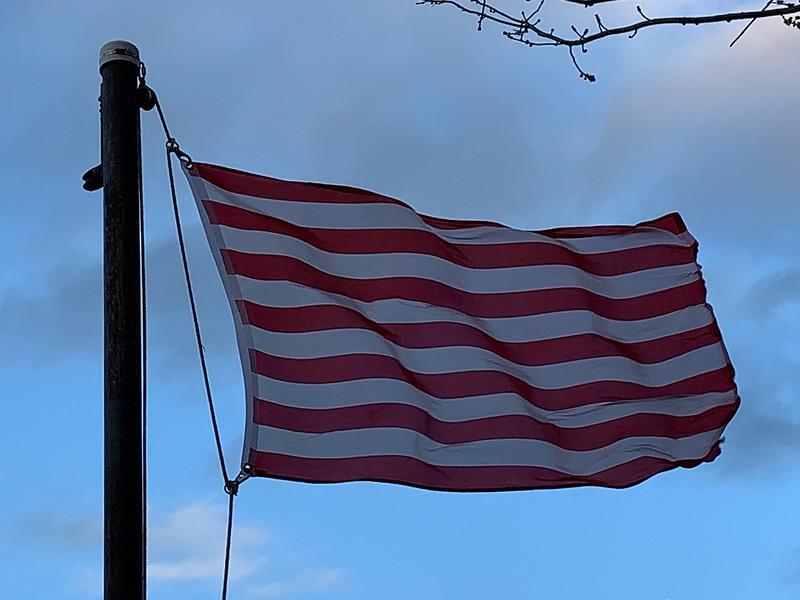 November 22, 2018 - Sons of Liberty Flag
