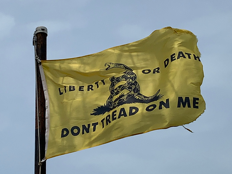 April 15, 2019 - Gadsden Flag