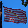 October 10, 1845 — Navy Jack Flag
