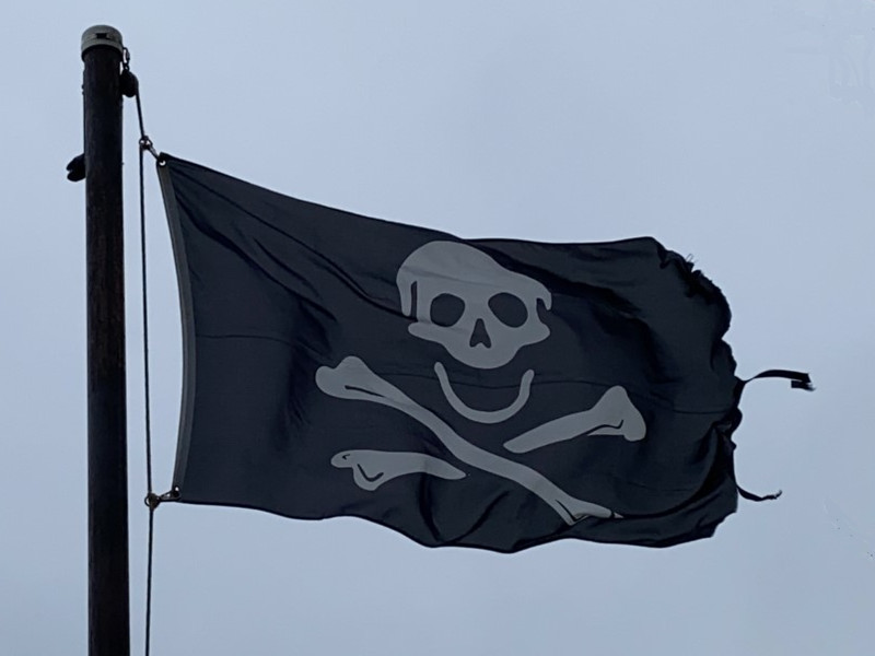 January 9, 2021 — Skull & Crossbones Flag