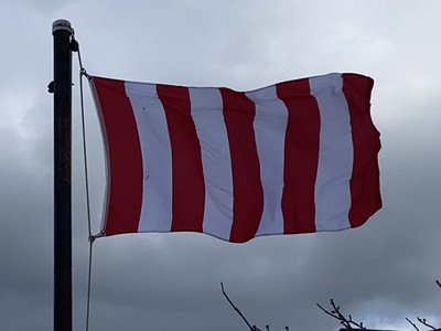 January 20, 2021 - Sons of Liberty Flag