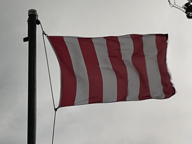 August 14, 2021 — Sons of Liberty Flag