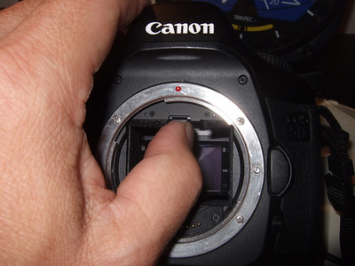 Canon 5S screen change/cleaning