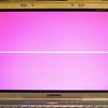 PSOD (Pink Screen of Death) <br /> My computer is dying a slow, agonizing death. It will freeze up and display strange colors. Here is one.