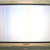 WSOD (White Screen of Death) <br /> My computer is dying a slow, agonizing death. It will freeze up and display strange colors. Here is one. The vertical color bars are a nice touch!