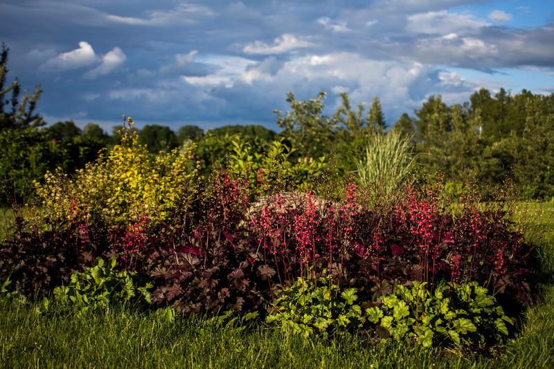 Taken with Voigtländer Color Skopar SL-II N 28mm f/2,8 (Canon)