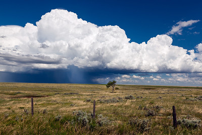 """Lost in the Prarie""  Chinook, MT Popup thunderstorms move across the MT prairie near the Canadian border. Technical Details: Shot with Canon 5D MK2 and Canon 24-70L lens at F10 and 1/60 seconds."