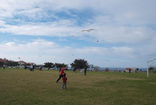 Kite Day 2010
