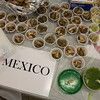 Food samples from Mexico.