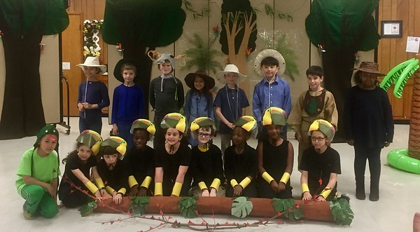 The Rainforest Play!