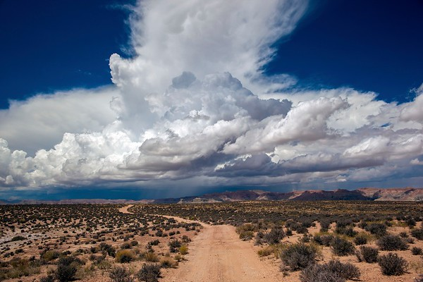 Clouds I No.  42-40375265