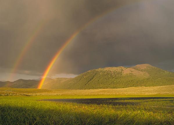 Regenbogen No.  42-33050520