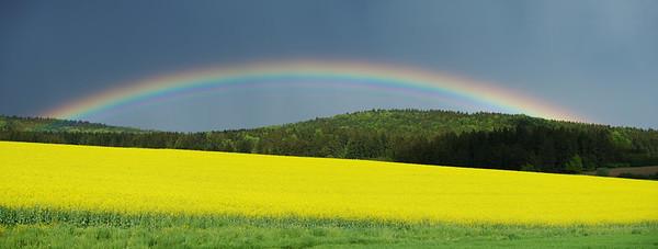 Regenbogen No.  7888276