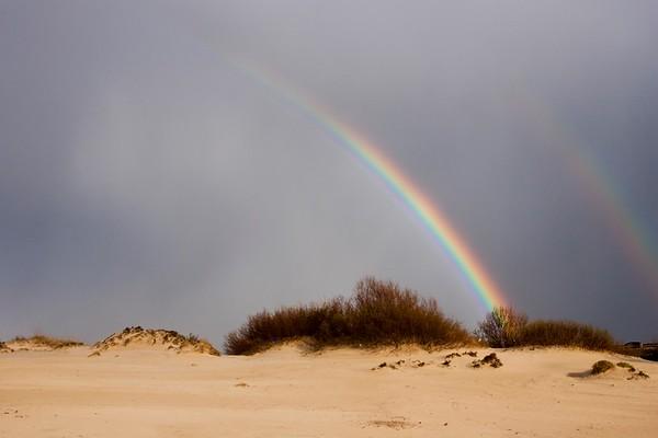 Regenbogen No.