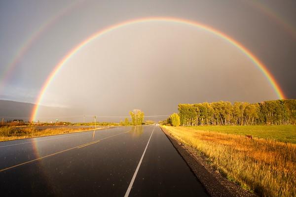 Regenbogen No.  42-24002526