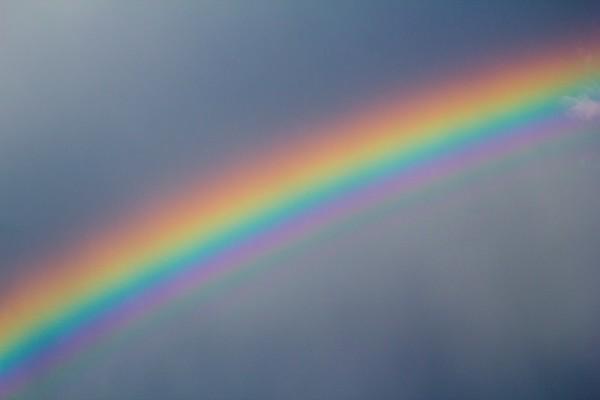Regenbogen No.  42-50736929
