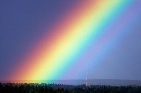 Regenbogen No.  42-46201404