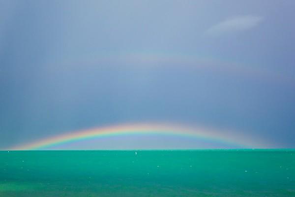 Regenbogen No.  42-54219891