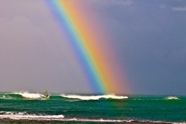 Regenbogen No.  42-24194202