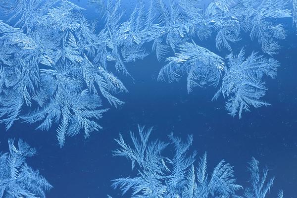 Snow Crystal No.  600-02912692