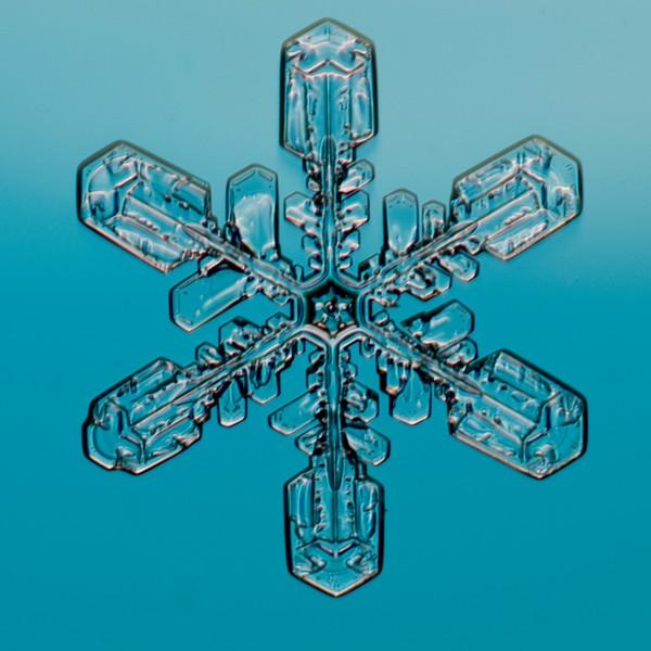 Snow Crystal No.  42-44662323