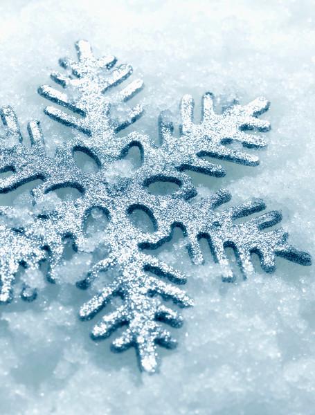 Snow Crystal No.  42-17177300