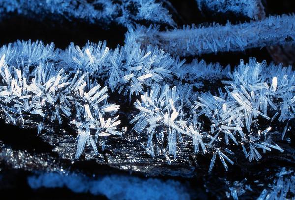 Snow Crystal No.  42-23964931