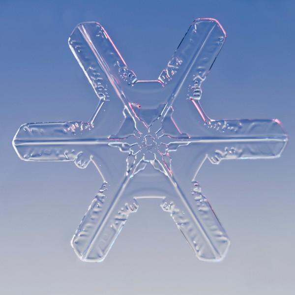 Snow Crystal No.  42-27844099