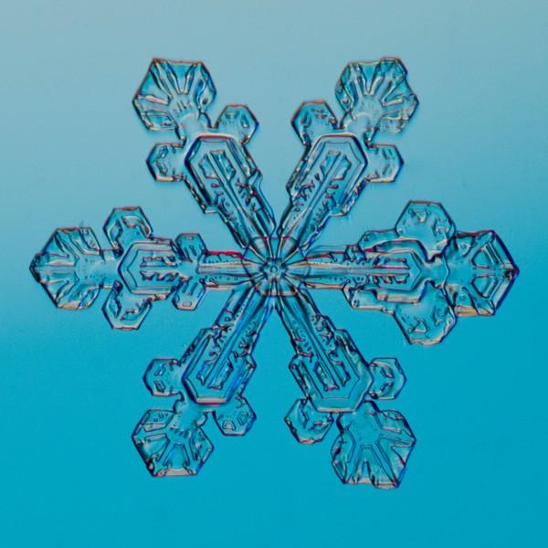 Snow Crystal No.  42-44662325