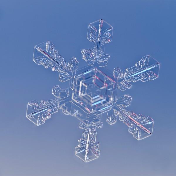 Snow Crystal No.  42-27844098