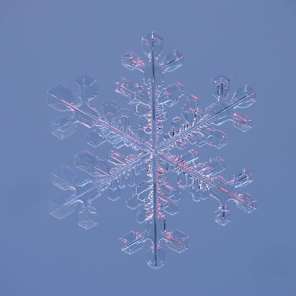 Snow Crystal No.  42-27844052