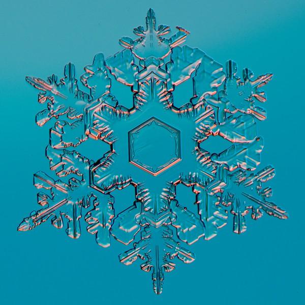 Snow Crystal No.  42-44661151
