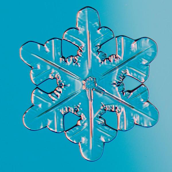 Snow Crystal No.  42-44662286