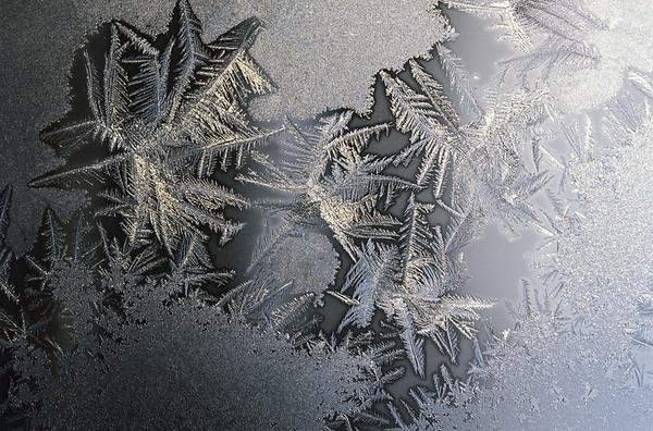 Snow Crystal No.  42-25902475