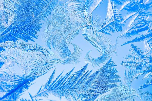 Snow Crystal No.  42-39048029