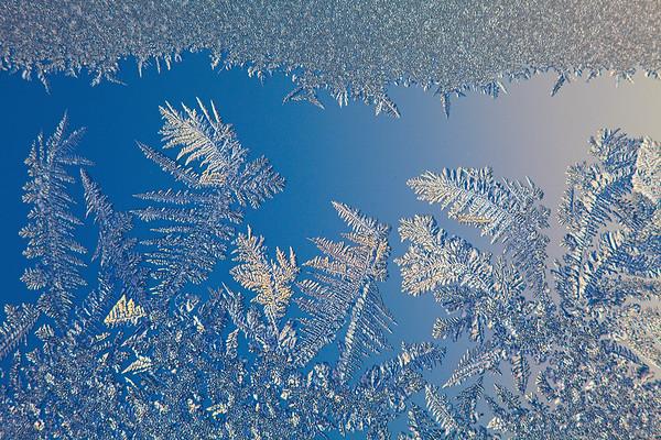 Snow Crystal No.  42-33964822