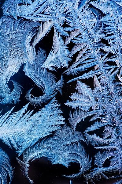 Snow Crystal No.  42-39048045