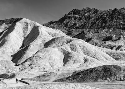 Death Valley Walker
