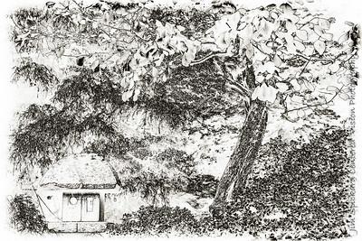 Stone Lantern with Tree
