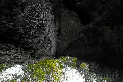 2012_0844