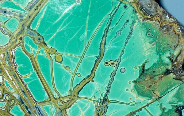 Mineral Macro No.  42-23929152