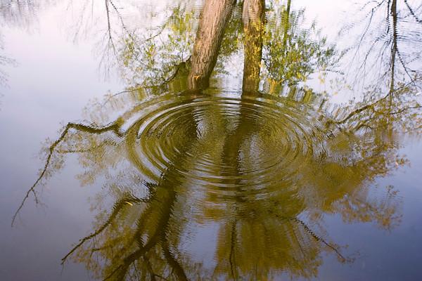 BT_Water Drop Nr. Wassertropfen No. 42-37087503