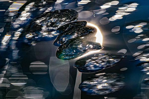 Kutaisi Water Fountain-5