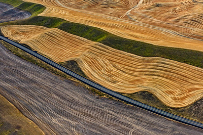 USA, Washington, Palouse, Aerial view of farmland at harvest time.