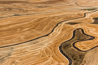 USA, Washington, Palouse, Aerial view of farmland at harvest time.