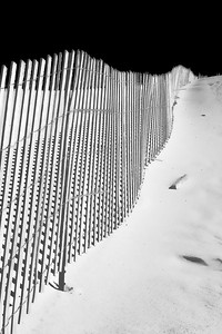 Close-up of a dune fence along Lake Michigan.