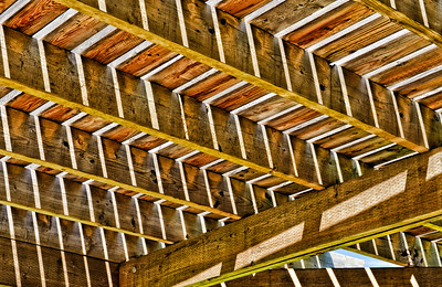Graphic composition of wooden deck roof trellis in dappled light.