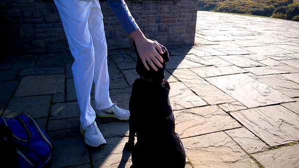 Zoey gets greeted on the first tee at Kingsbarns